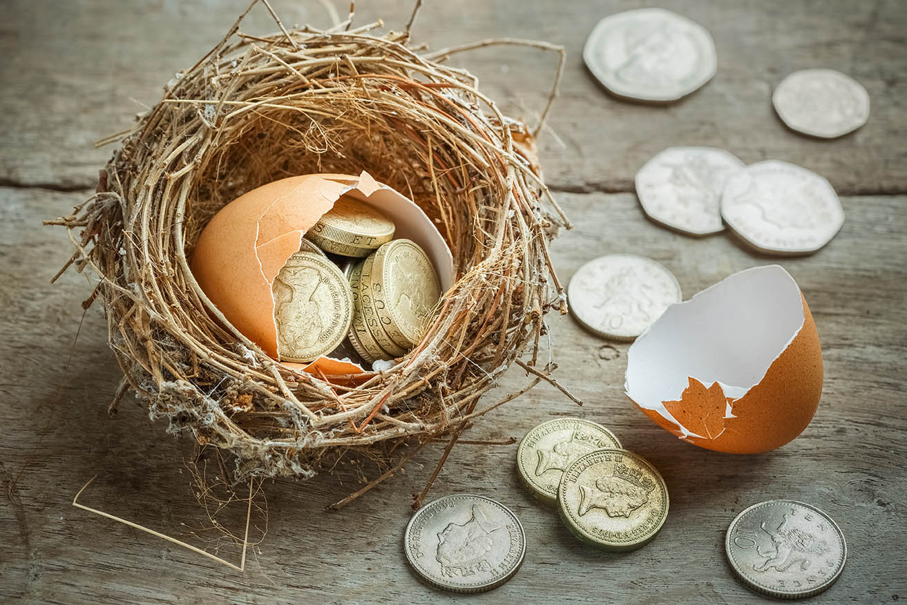 coins in a broken egg in a nest representing the estimated income for retirement